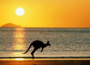 Австралия – чудо страна